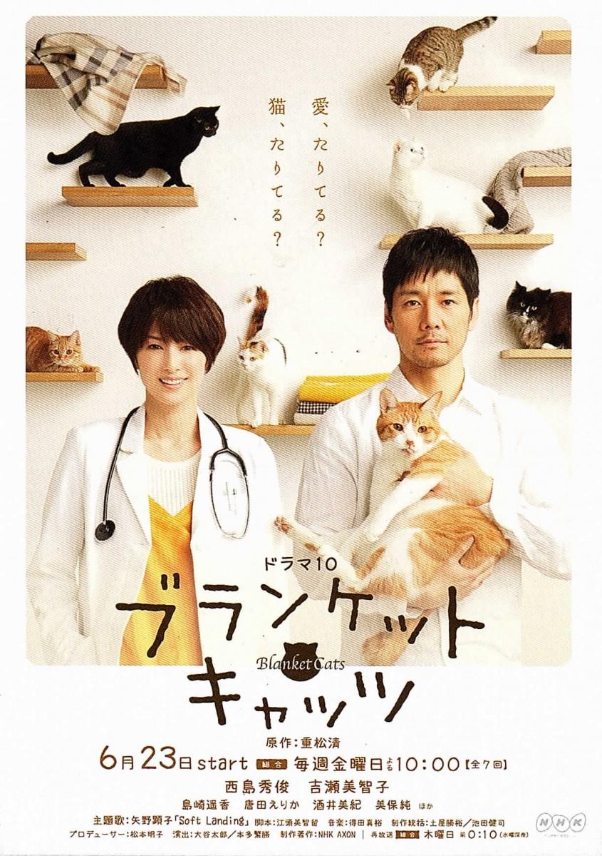 NHK ドラマ10「ブランケット・キャッツ」修繕指導